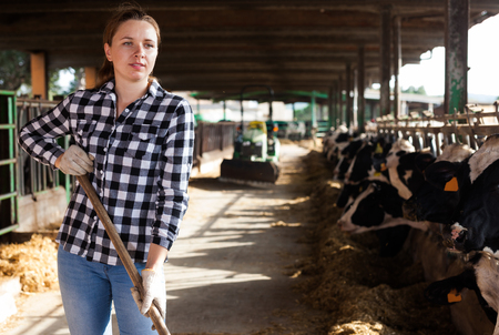 Young woman working with hay for cows on dairy farm Stock Photo