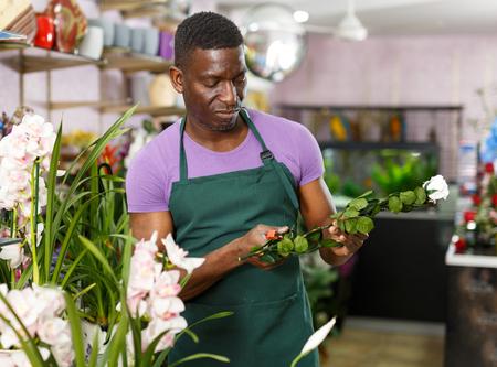 Portrait of skilled African-American man florist arranging floral arrangements at flower shop Reklamní fotografie