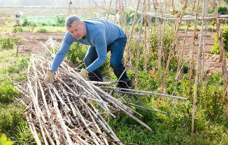 Man  professional gardener working with wooden trellis in garden outdoor