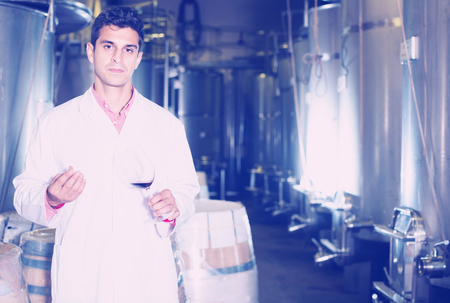 Professional male sommelier checking wine fermentation in winery interior