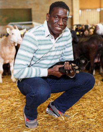 African American male farmworker taking care of goatlings on cattle farm