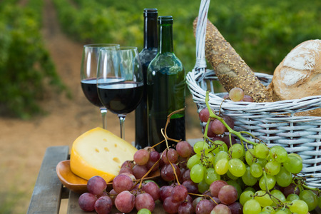 Red wine bottles and glasses with cheese, grapes and bread in basket overlooking vineyard