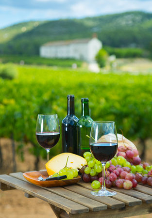 Glasses and bottles of red wine, cheese, bread and grapes against sunny vineyard Banque d'images - 122799298