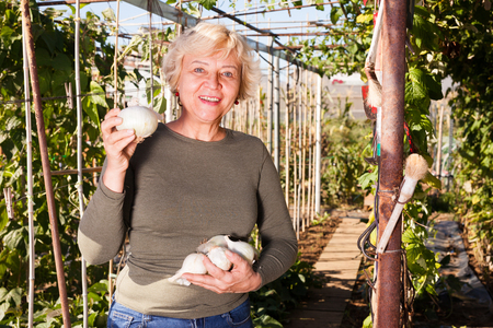 Portrait of positive senior woman holding white onion in her hands in garden