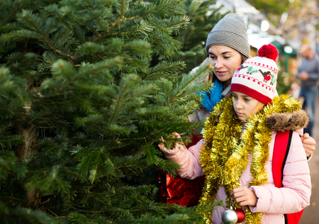 smiling girl with mom choosing New Years tree outdoors Stock Photo