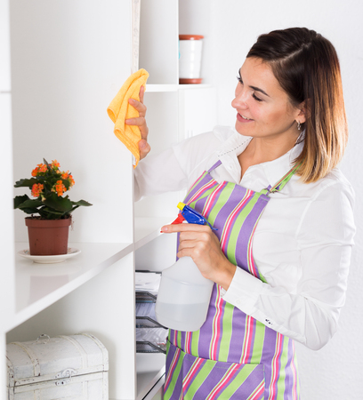 Young housewife working productively on cleaning house Banco de Imagens