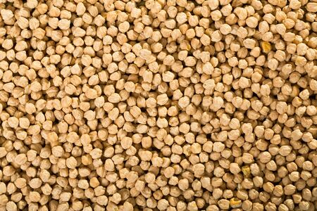 Grains of raw chickpeas as background. Natural healthy food