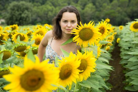 Young positive girl posing in sunflowers field and having fun Standard-Bild