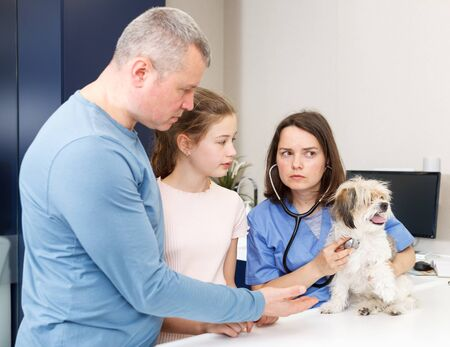 Female veterinarian examining puppy in clinic in presence of worried man and preteen girl Фото со стока