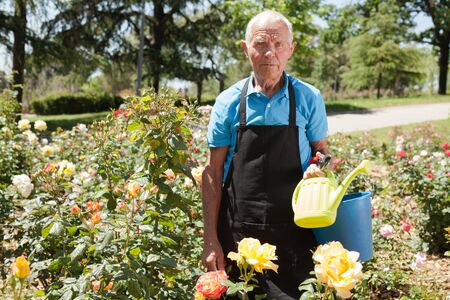 Portrait of cheerful mature man with bucket and watering can at flower bed on sunny day Stock Photo