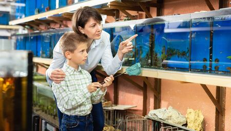 Cheerful woman with preteen son looking for aquarium fishes for in pet store