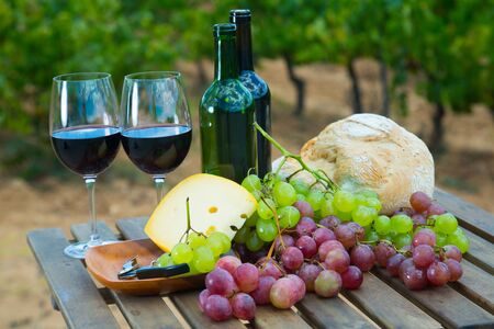 Glasses and bottles of red wine, cheese, bread and grapes against sunny vineyard