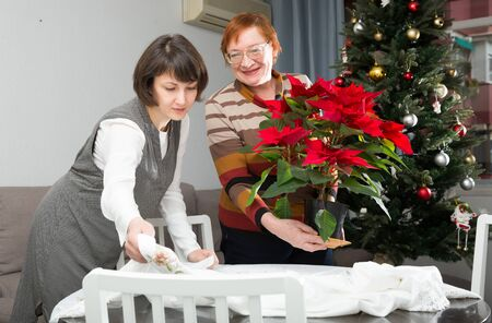 Happy woman with her elderly mother decorating house with white tablecloth and red flowering poinsettia on New Year Eve
