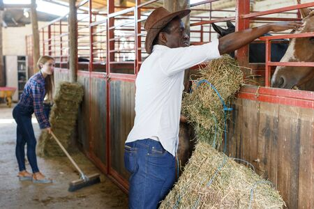 Couple of farmers afro man and Caucasian woman working at stable Stock Photo