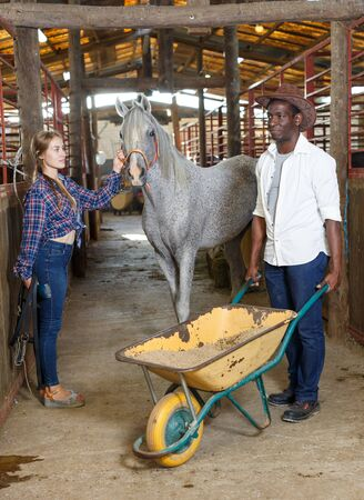 Cheerful African man and European woman working at stable, delivering oats on wheelbarrow
