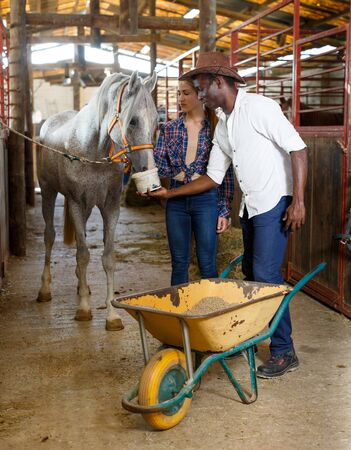 Man and girl farm workers feeding horses grain in stable