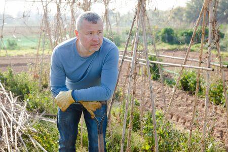 Male horticulturist with mattock standing near wooden trellis in  garden outdoor Banque d'images