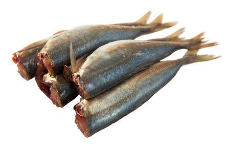 Fresh eviscerated Atlantic horse mackerel. Isolated over white background Stok Fotoğraf - 130027348