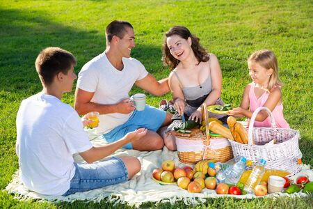 Cheerful attractive woman picnicking with her children and husband on green lawn in summer city park