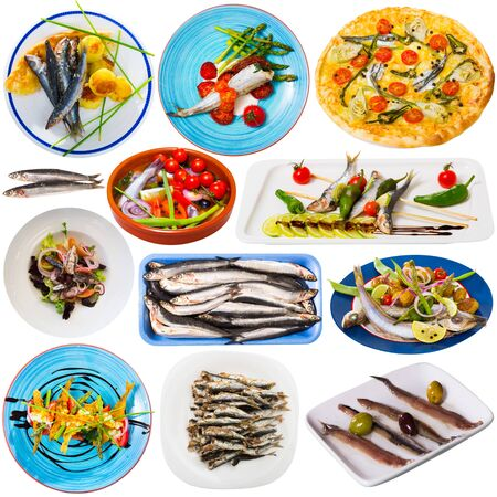Tasty different dishes with horse-mackerel and sardines at plates  isolated on white background Zdjęcie Seryjne