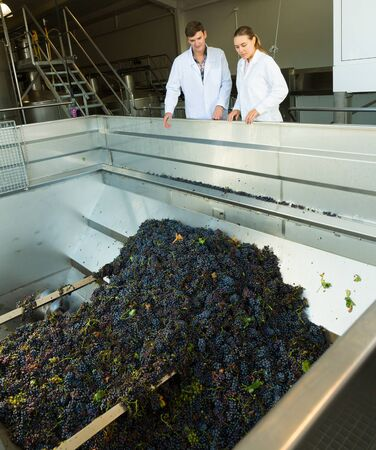Two qualified workers of modern winery standing near mechanical grapes destemmer, discussing manufacturing process Stock Photo