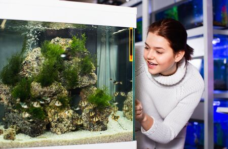 Happy positive girl looking at striped tropical fish in aquarium with rocks and seaweed inside in aquarium shop 版權商用圖片