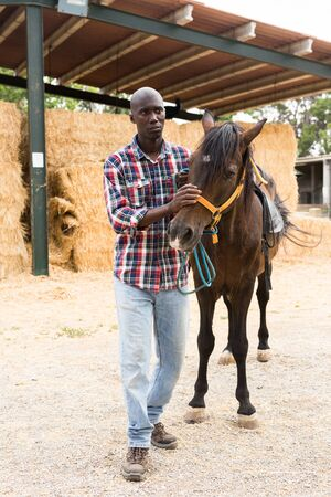 Positive male african american farmer standing  with  horse  at stable outdoor