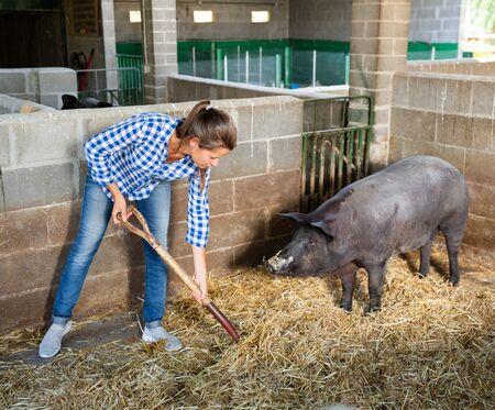 Portrait of female farmer feeding iberian pigs on farm