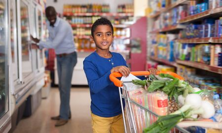 Glad African American tween boy carrying purchases in trolley during shopping in grocery store