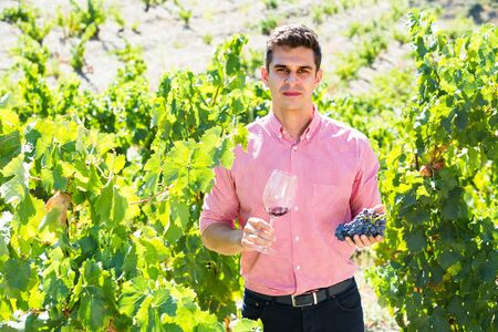 Proud male vintner with clusters of grape and wine outdoors in summer