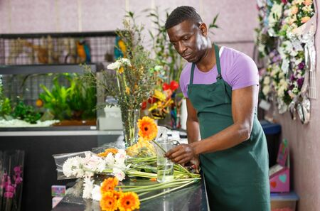 Focused African American man in apron working in flower shop, creating floral arrangement with fresh gerberas 写真素材