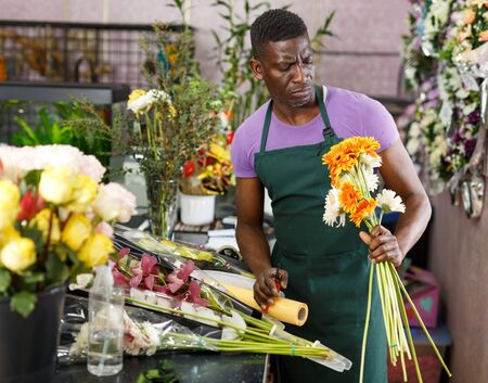 Experienced African American male florist checking and preparing fresh gerberas for bouquet in his floral shop 写真素材