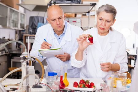 Two experienced biochemists checking fruits and vegetables for nitrates and pesticides in modern laboratory, recording experimental procedure and results Stock Photo