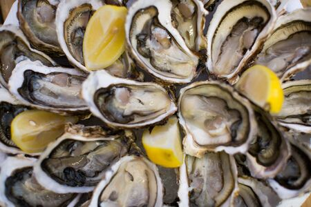 oysters with lemon on plate close up shot top view