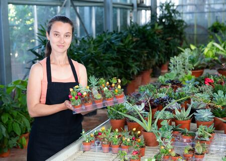 Positive woman holding a tray with cactuses in orangery Stockfoto