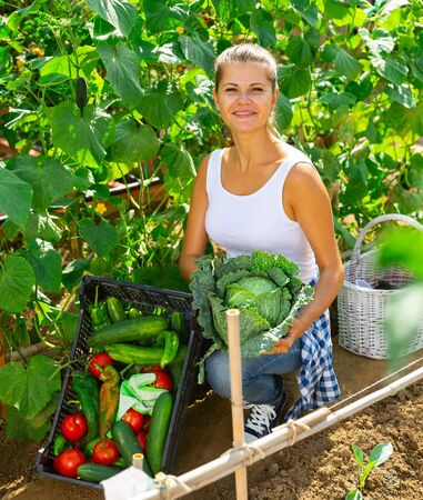 Joyful woman harvesting vegetables in a box