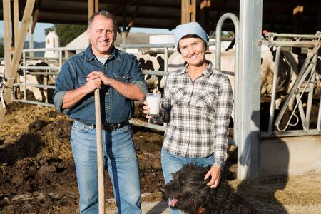 Portrait of successful mature male and female owners of dairy farm at cowshed