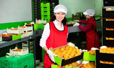 Smiling pleasant cheerful  workwoman engaged on fruit sorting line, carrying plastic box with apricots in storage
