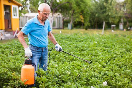 Man works with garden spray in the yard