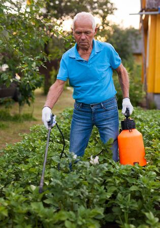 Farmer sprays harvest of vegetables with insecticides