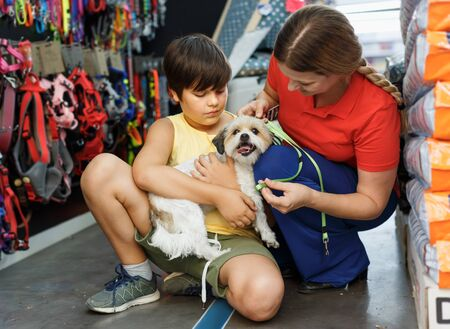 Preteen boy with  little dog and mother  choosing pet accessories in pet store