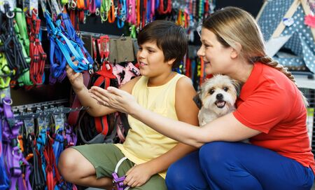 Preteen boy with mother choosing accessories for their havanese puppy in pet store Reklamní fotografie