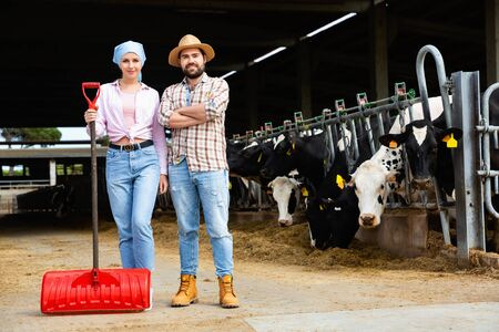 Portrait of successful cheerful positive smiling couple of professional breeders standing in cowshed Stock Photo