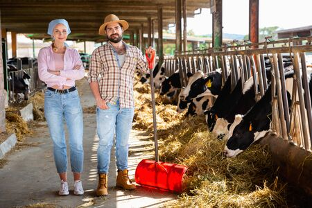 Portrait of successful young happy  smiling couple of professional breeders standing in cowshed Stock Photo