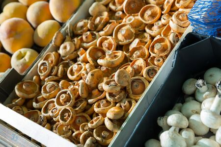 Close up view of wooden box of champignons in grocery store