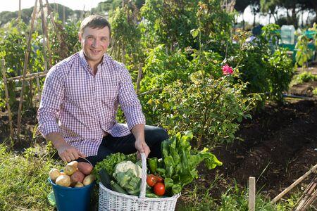 Joyful man harvesting vegetables in a basket