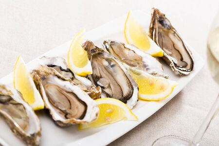 Gourmet raw oysters on white plate with sliced lemon
