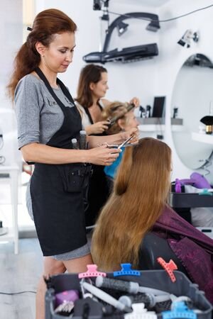 Professional hairdresser cutting hair of young female client in hair salon