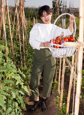 Cheerful Asian girl holding basket of tomatoes, cucumbers and peppers on her plantation