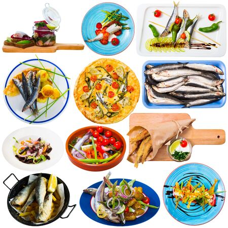 Collage of different tempting dishes cooked with small fish isolated on white background